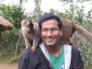 #BrownLemurs #lemurs