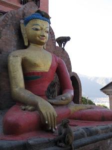 #kathmandu #monkey #monkeytemple #buddha #swayambhunath