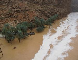 Flooded Wadi Tiwi
